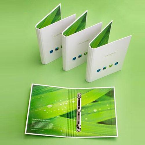 Customized Ring File Folder FF9463