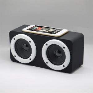 Touch Speaker TS2121