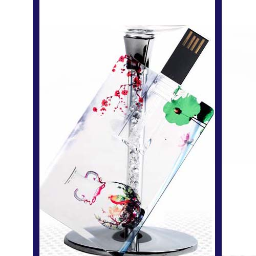 Transparent Card USB LT1034